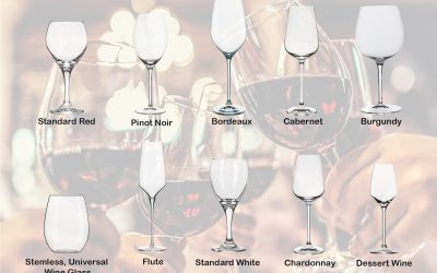 Wine Central: 12+ Wine Glass Types + Tips + Brands